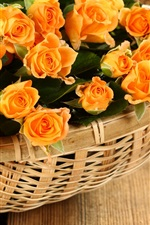 Preview iPhone wallpaper Orange rose flowers, basket
