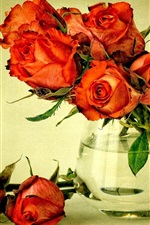 Preview iPhone wallpaper Red flowers, bouquet roses, vase, water