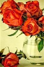 미리보기 iPhone 배경 화면 붉은 꽃, 꽃다발 장미, 꽃병, 물