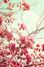 Preview iPhone wallpaper Red leaves and flowers, twigs, tree, art style