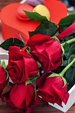 Preview iPhone wallpaper Red rose flowers, bouquet, gift, romantic