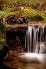 Switzerland, stream, waterfall, moss, nature
