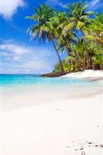 Thailand, coast, sea, island, beach, palm trees