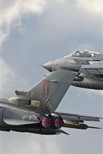 Preview iPhone wallpaper Tornado GR4 fighters