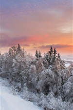 Preview iPhone wallpaper Winter nature landscape, snow, forest, sunset