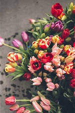 Preview iPhone wallpaper A lot tulips, different colors