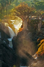 Preview iPhone wallpaper Africa Kunene river, waterfall, trees