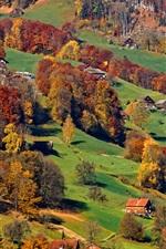 iPhone обои Альпы, склон, деревня, деревья, осень
