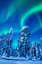 Preview iPhone wallpaper Beautiful northern lights, winter, snow, spruce, trees, night
