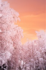 Preview iPhone wallpaper Beautiful winter, trees, snow, red sky
