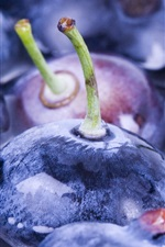 Preview iPhone wallpaper Blueberries macro photography