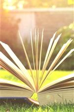 Preview iPhone wallpaper Book, grass, sunshine