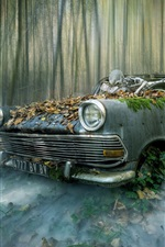 Preview iPhone wallpaper Broken car, skeleton, forest, creative picture