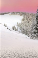 Preview iPhone wallpaper Carpathians, Ukraine, spruce, trees, winter, snow, sunset