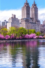 Preview iPhone wallpaper Central Park, trees, pond, city, skyscrapers, New York, USA