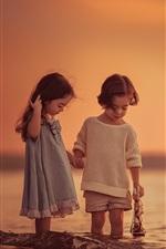 Crianças, jogo, jogos, mar, pôr do sol