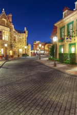 Preview iPhone wallpaper Disneyland, sidewalk, street, night, lights, houses, USA