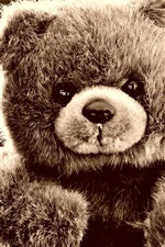 Preview iPhone wallpaper Furry toys, teddy bear