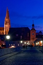 Preview iPhone wallpaper Germany, Bayern, Regensburg, city night, bridge, houses, lights