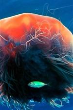Preview iPhone wallpaper Jellyfish, tentacles, ocean, fish