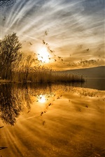 Preview iPhone wallpaper Lake at sunset, reeds, water reflection