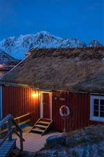 Preview iPhone wallpaper Lofoten, Norway, houses, mountains, winter, snow, bay, night, lights