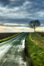Preview iPhone wallpaper Morning, road, tree, fields, clouds