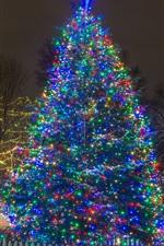 미리보기 iPhone 배경 화면 새해, 크리스마스 트리, 조명, 밤, 겨울, 설원, 도시