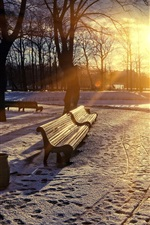 Park in winter, sunrise, snow, trees, bench, sun rays
