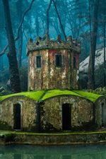 Preview iPhone wallpaper Portugal, Sintra, park, trees, mini castle, moss, stones, pond
