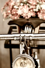 Preview iPhone wallpaper Retro bike, flowers