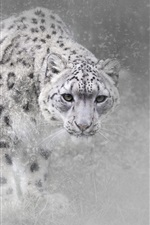 Preview iPhone wallpaper Snow leopard in winter, snow, fog