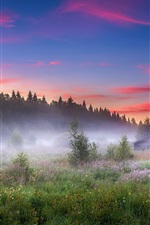 Preview iPhone wallpaper Summer, morning, fog, house, trees, grass