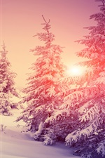 Preview iPhone wallpaper Thick snow, winter, forest, trees, warm sun