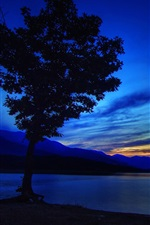 Tree, lake, mountains, sunset, sky, clouds, dusk, glow