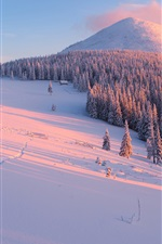 Preview iPhone wallpaper Winter, slope, trees, snow, mountains, sun rays