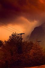 秋、木々、道、霧、夜