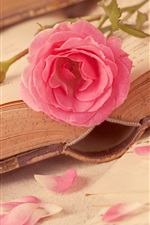 Preview iPhone wallpaper Book, rose, love heart