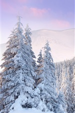 Preview iPhone wallpaper Cold winter, forest, mountains, thick white snow, dawn