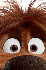 Preview iPhone wallpaper Duke, The Secret Life of Pets
