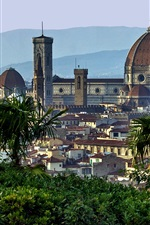 Preview iPhone wallpaper Florence, Tuscany, Italy, houses, palm trees