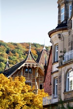 Preview iPhone wallpaper Germany, Heidelberg, buildings, trees, autumn