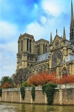 Preview iPhone wallpaper Notre Dame Cathedral, river, blue sky, trees, France, Paris