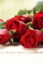 Red rose flowers, bouquet, romantic