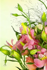 Preview iPhone wallpaper Roses, eustoma, bouquet, flowers, green background