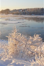 Preview iPhone wallpaper Snow, ice, river, grass, trees, winter, morning