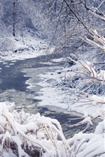 Preview iPhone wallpaper Snow winter, trees, forest, river, snowflakes