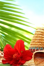 Preview iPhone wallpaper Still life, tropical, hat, seashell, starfish, flower, sunglasses