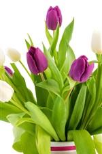 iPhone壁紙のプレビュー 白と紫のチューリップの花、花瓶