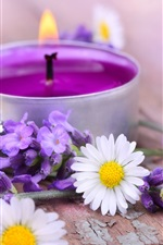 Preview iPhone wallpaper White chamomile flowers, purple lavender, candle, fire